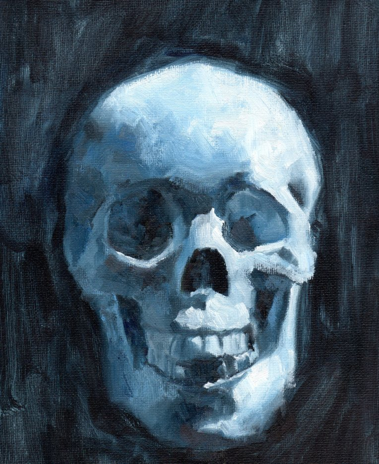Three Colors Skull Study