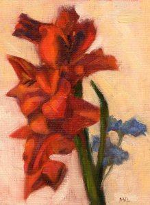 6-5-14 Amaryllis Spring