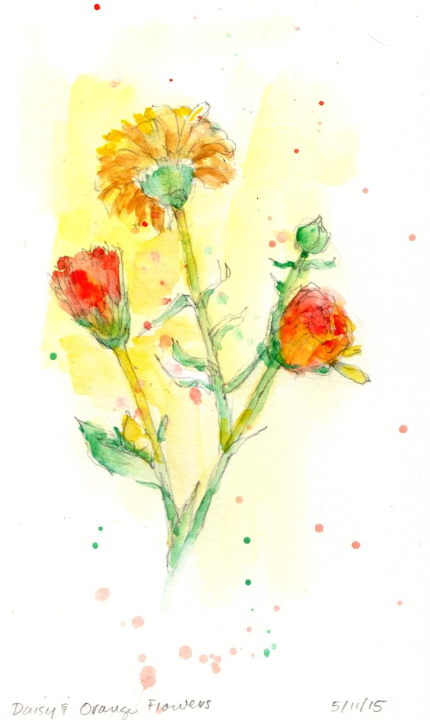 Daisy and Orange Flowers May 2015 watercolor 8x5