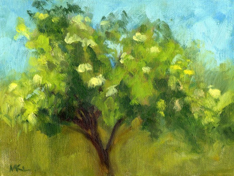 Elderberry Tree at W Dav Pond may2015 oil 6x8