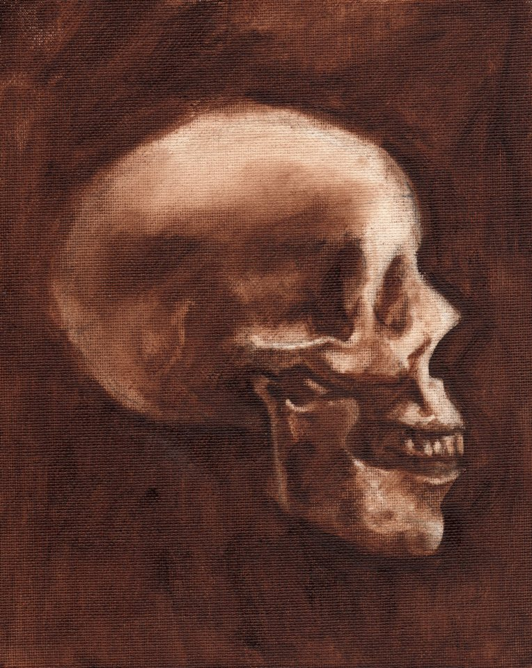 Skull Profile burnt umber 060115