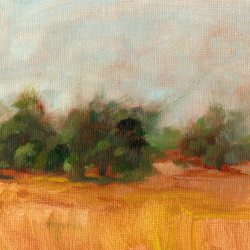 Cache Acres Dairy Yolo, oil, 6 x 8