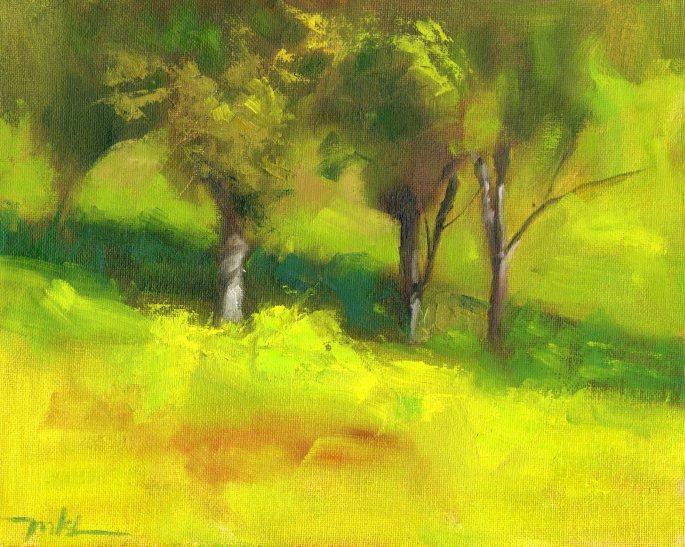 Capay Valley Vineyards Birch Trees