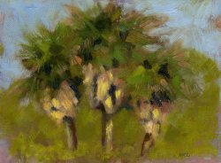Three Palms at Central 040815 oil 6x8