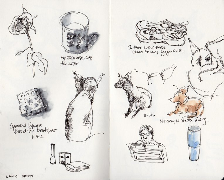 20161104-moleskine-sketchbook