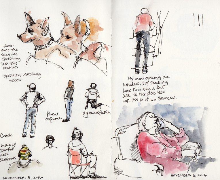 20161105-moleskine-sketchbook
