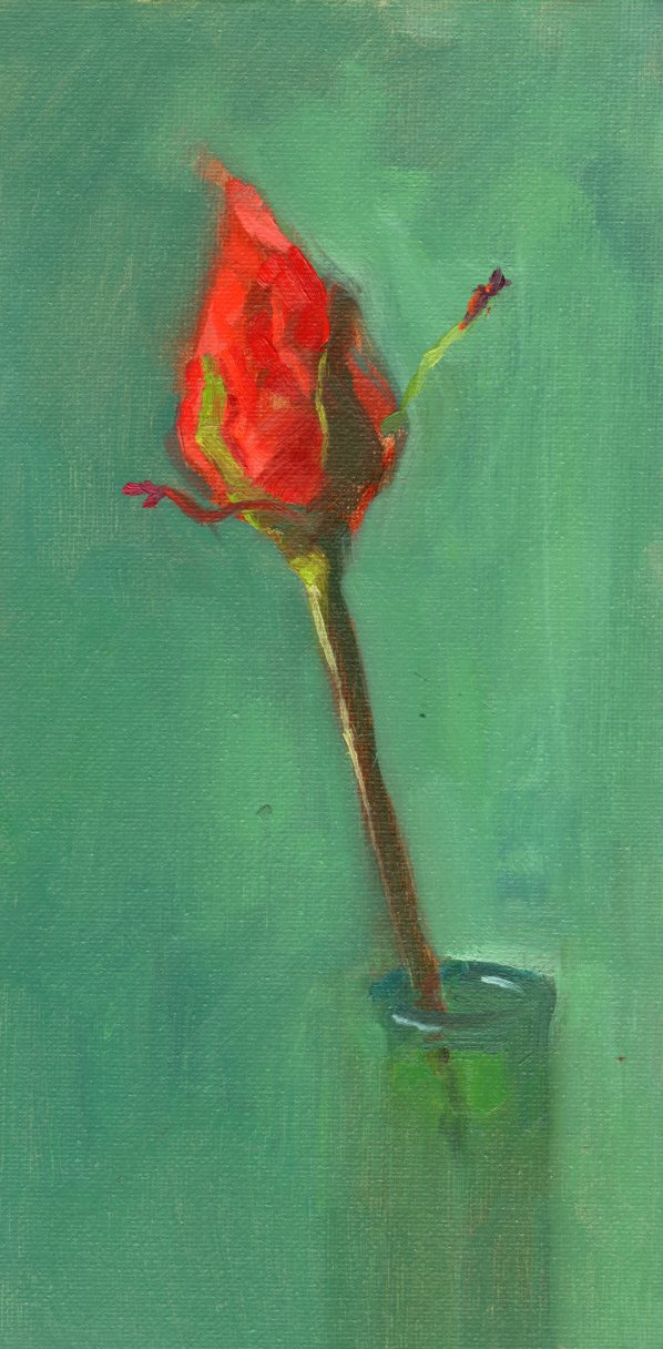 2016121_williams_rose_oil_12x6