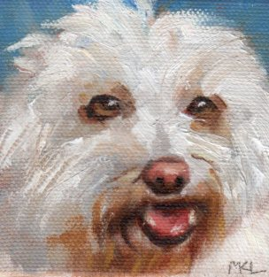 Maltese, 3 x 3 x 1/4 inches oil on canvas
