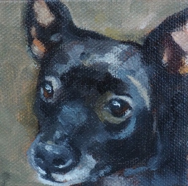Dingo, oil, 3 x 3 inches by Marlene Lee