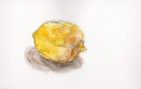 092117_Lemon 96dpi