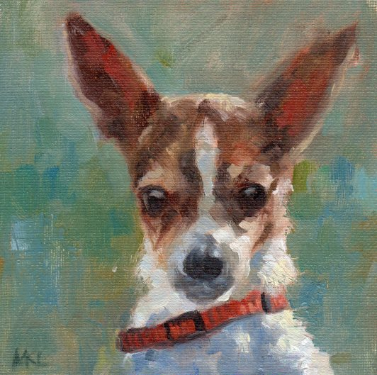 Brown n White Chihuahua 6x6 032017