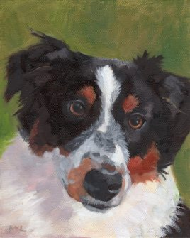 Wiley, oil on 8 x 10 stretched canvas, by Marlene Lee