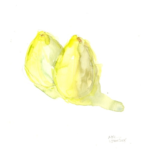 Day 1_Pears_30x30DW