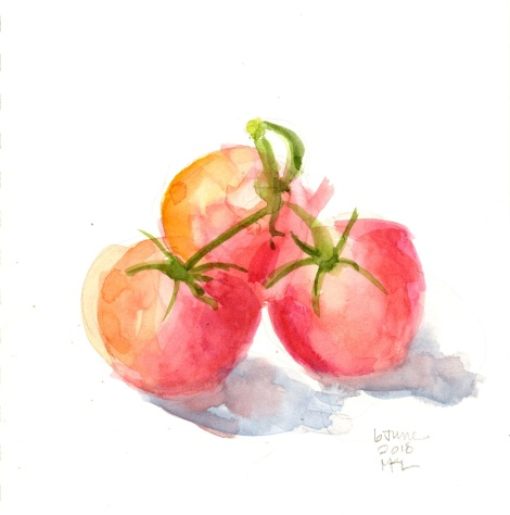 Day 6_Tomatoes_30x30DW