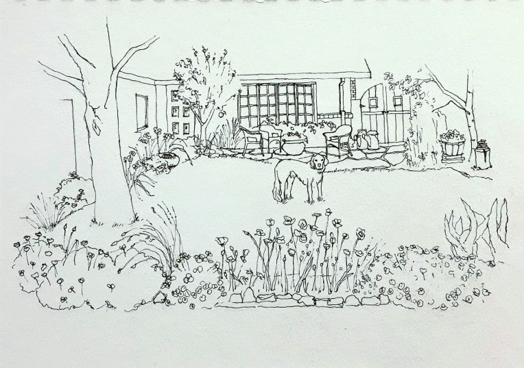 Alice's Yard Sketch 3