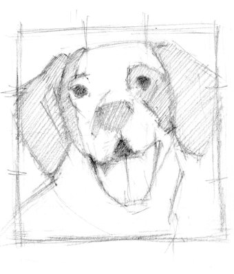 Freckles sketch