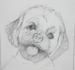 Roy sketch