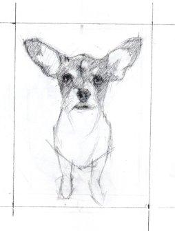 Pencil sketch of Jinga