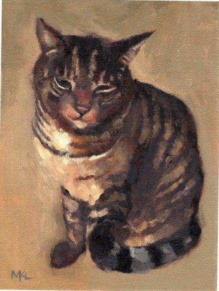 Tabby Cat 2019