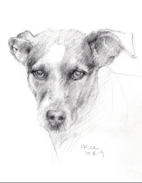 Dog Pencil Portrait 100319