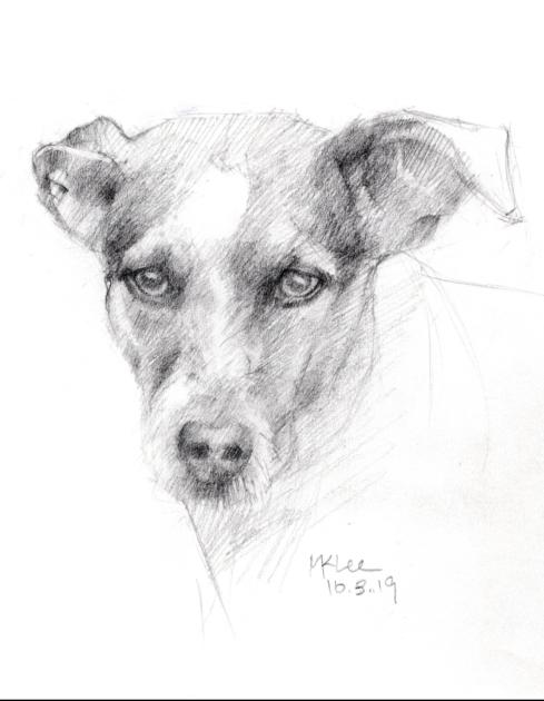 Dog Pencil Portrait 100319