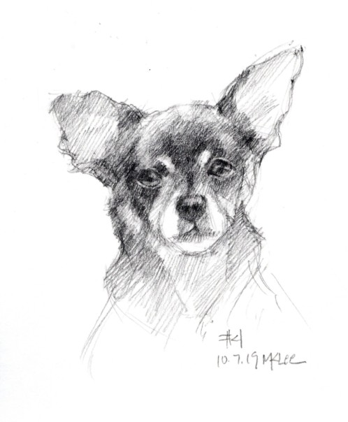 Dog Pencil Portrait 100719