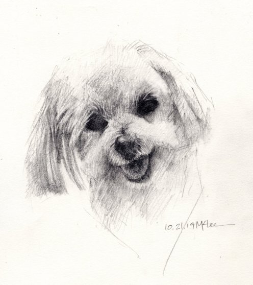 Dog Pencil Portrait 102119